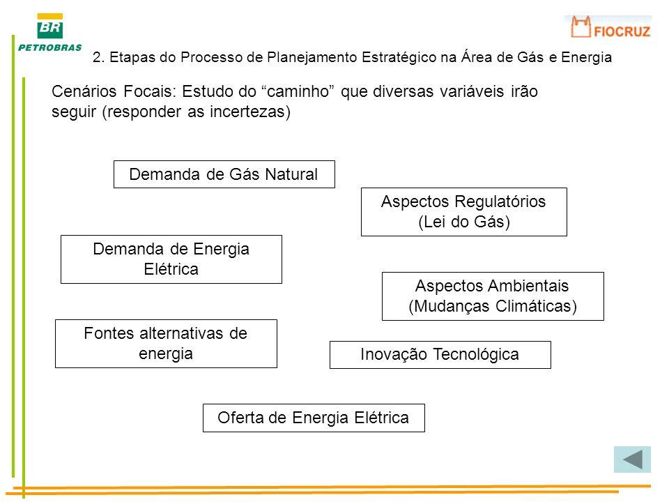 Aspectos Regulatórios (Lei do Gás)