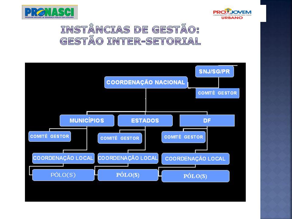 INSTÂNCIAS DE GESTÃO: GESTÃO INTER-SETORIAL