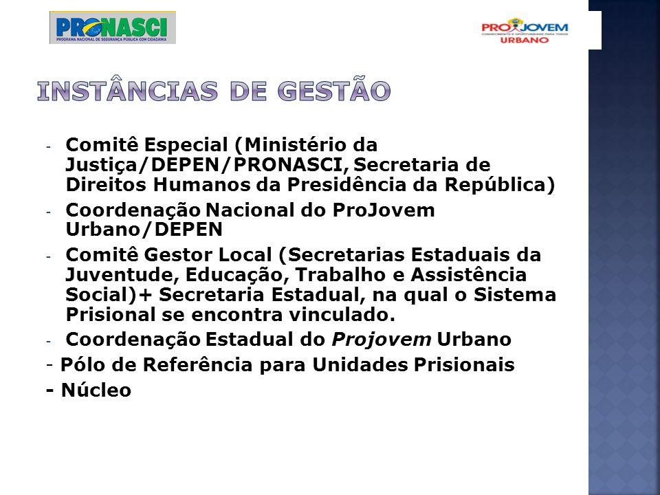 INSTÂNCIAS DE GESTÃO Comitê Especial (Ministério da Justiça/DEPEN/PRONASCI, Secretaria de Direitos Humanos da Presidência da República)