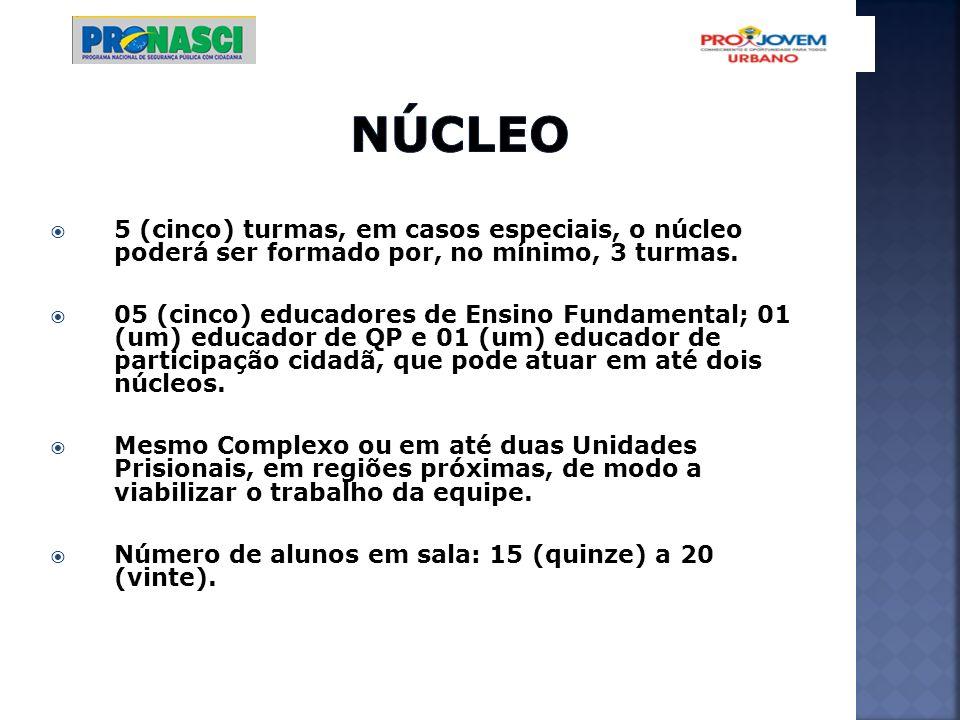Núcleo 5 (cinco) turmas, em casos especiais, o núcleo poderá ser formado por, no mínimo, 3 turmas.