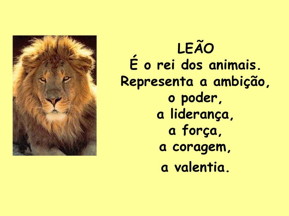 LEÃO É o rei dos animais.