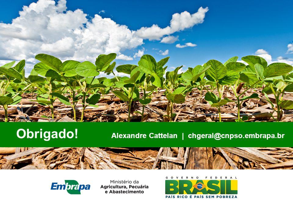 Obrigado! Alexandre Cattelan | chgeral@cnpso.embrapa.br