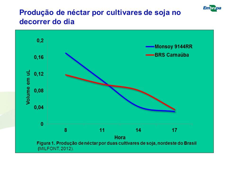 Produção de néctar por cultivares de soja no decorrer do dia