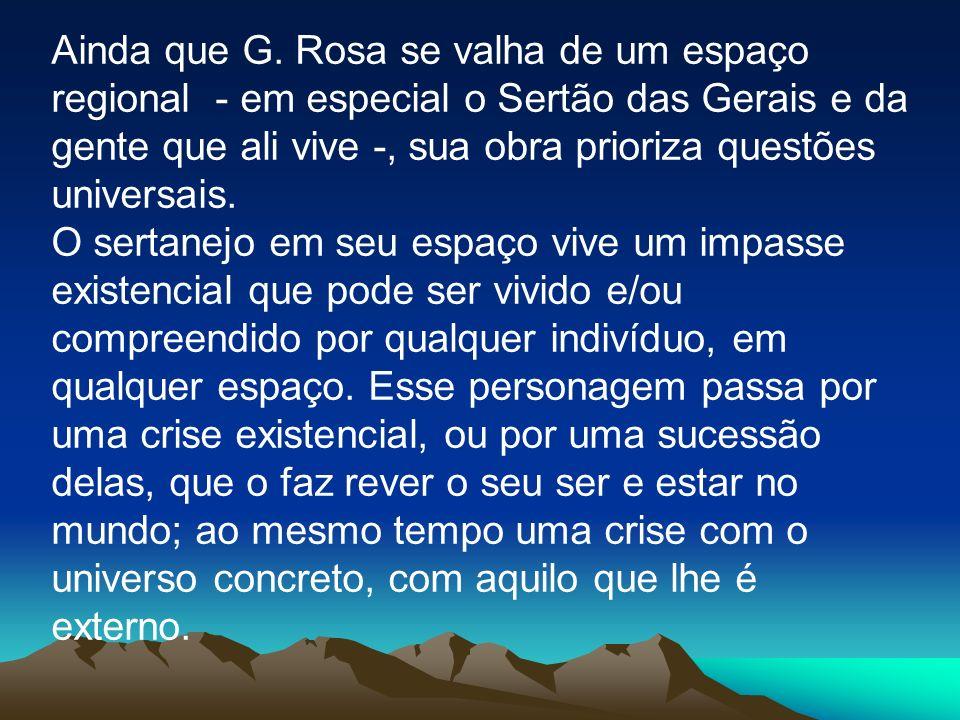 Ainda que G. Rosa se valha de um espaço regional - em especial o Sertão das Gerais e da gente que ali vive -, sua obra prioriza questões universais.