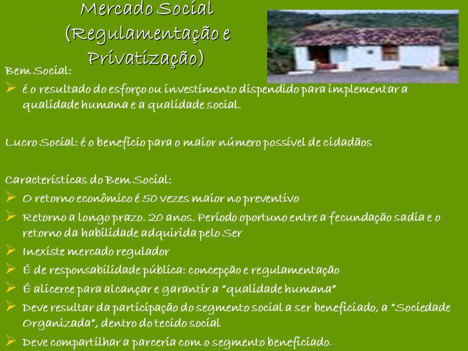 Mercado Social (Regulamentação e Privatização)