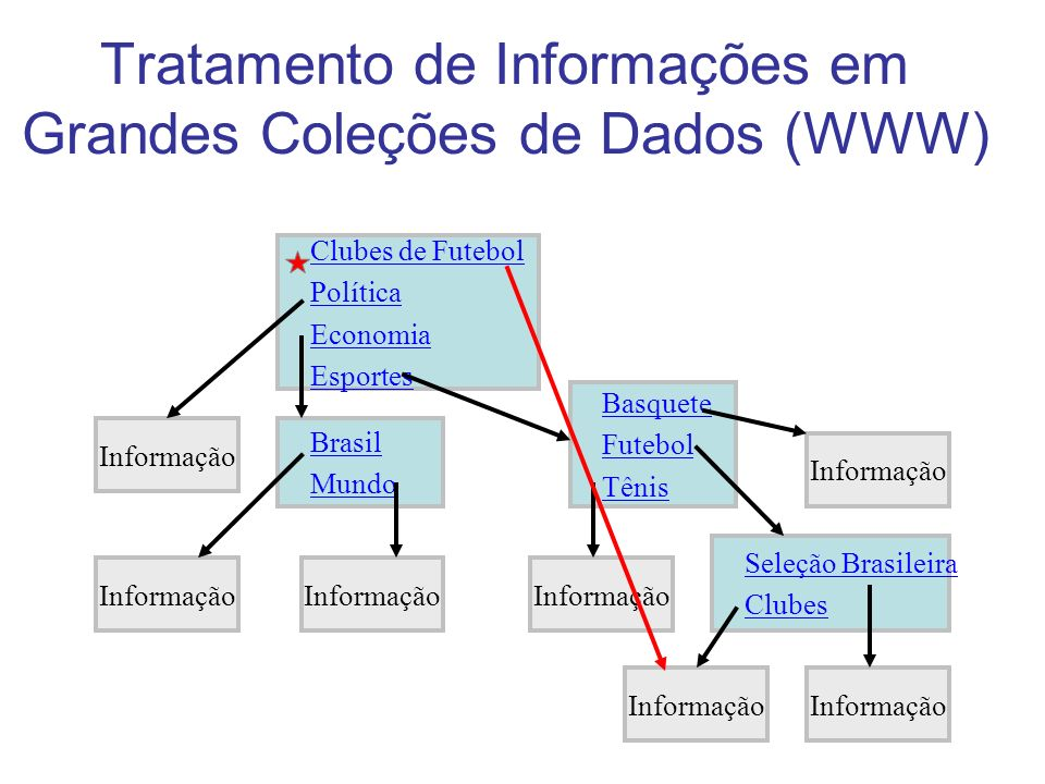 Tratamento de Informações em Grandes Coleções de Dados (WWW)