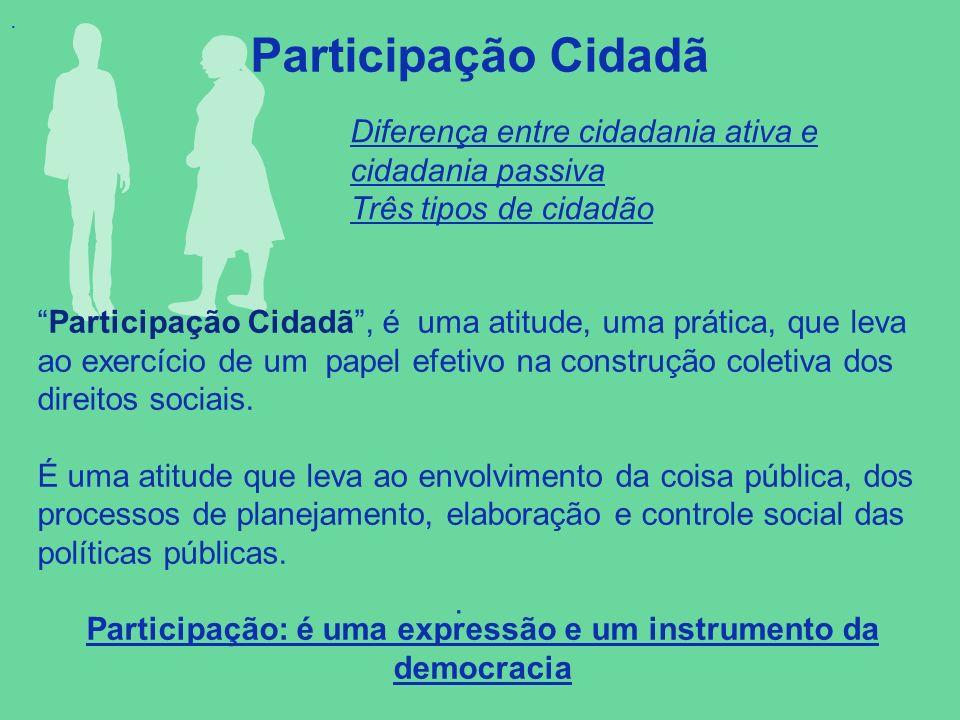 Participação: é uma expressão e um instrumento da democracia