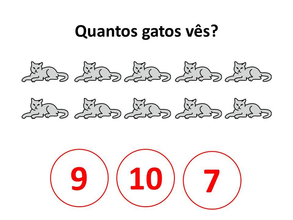 Quantos gatos vês 9 10 7