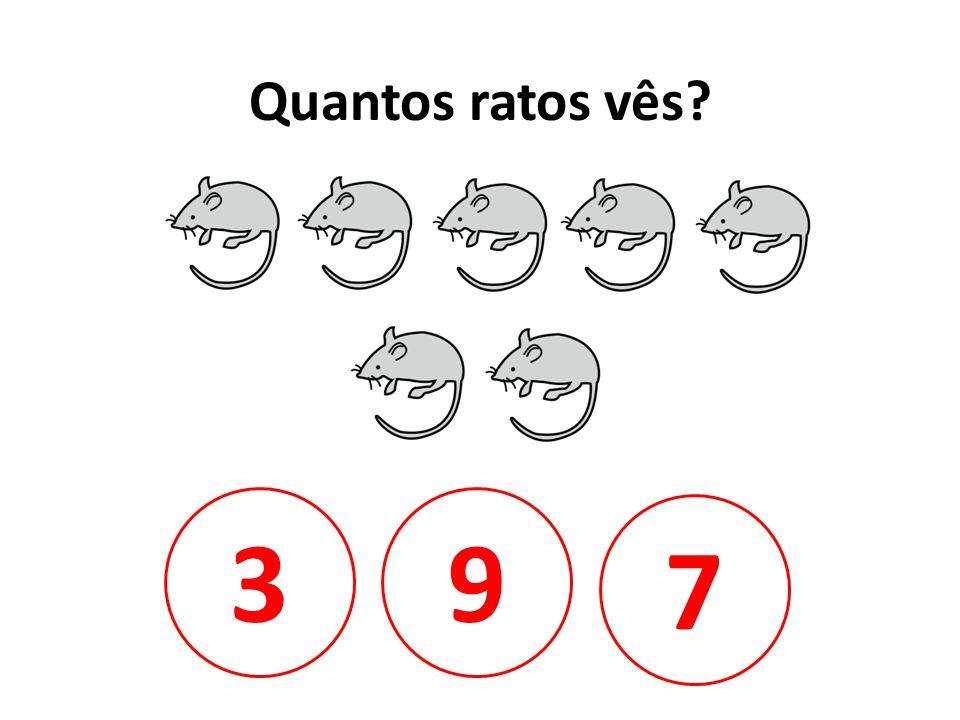 Quantos ratos vês 3 9 7