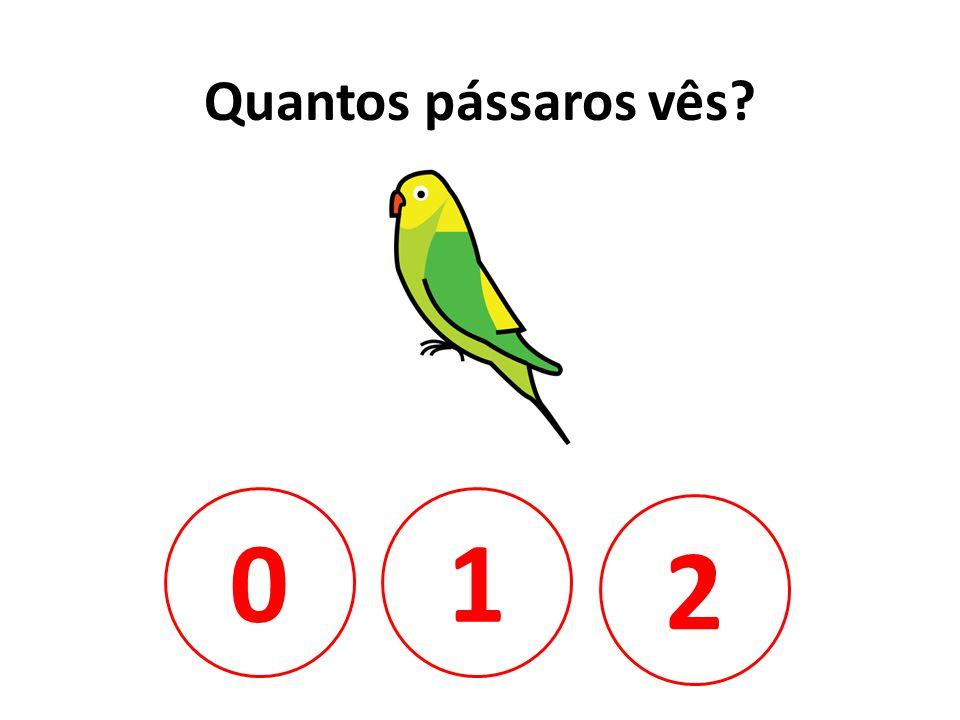Quantos pássaros vês 1 2