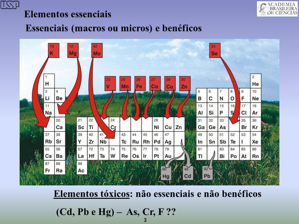 Elementos essenciais Essenciais (macros ou micros) e benéficos.