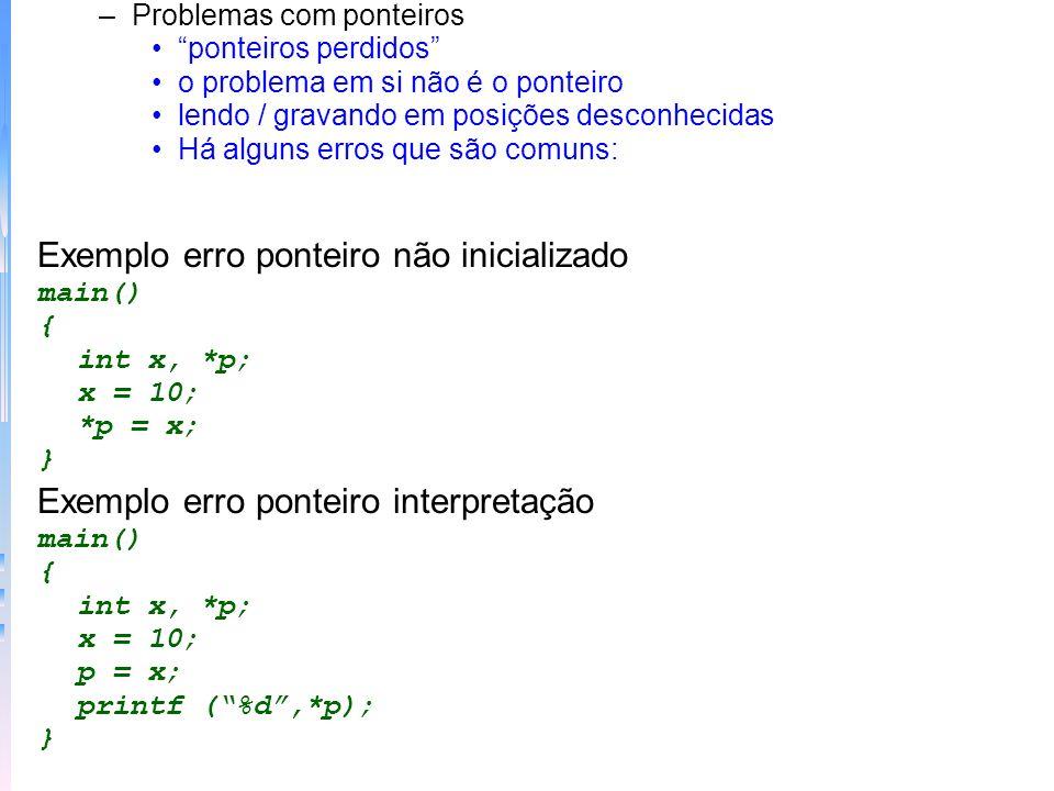 Exemplo erro ponteiro não inicializado