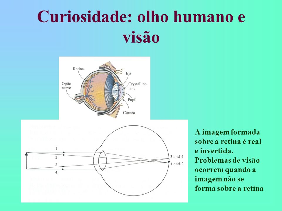 Curiosidade: olho humano e visão