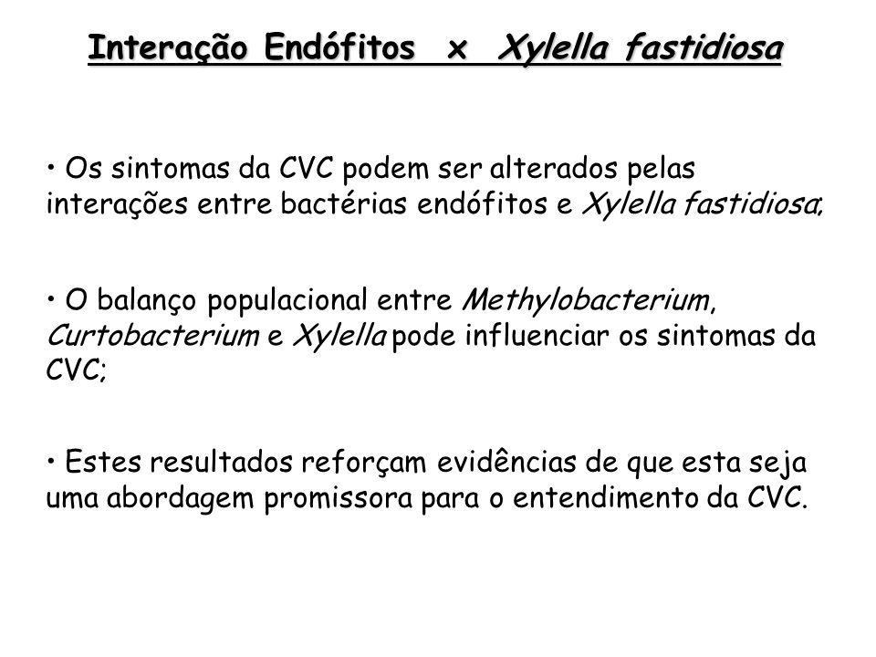 Interação Endófitos x Xylella fastidiosa