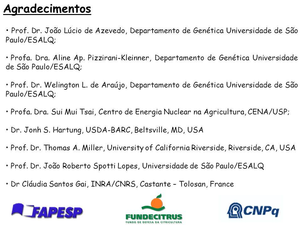 Agradecimentos Prof. Dr. João Lúcio de Azevedo, Departamento de Genética Universidade de São Paulo/ESALQ;