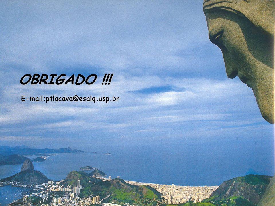 OBRIGADO !!! E-mail:ptlacava@esalq.usp.br