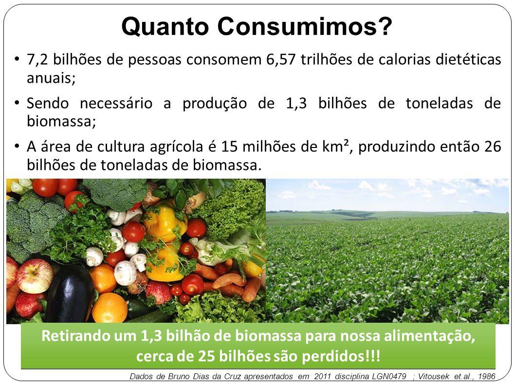 Quanto Consumimos 7,2 bilhões de pessoas consomem 6,57 trilhões de calorias dietéticas anuais;