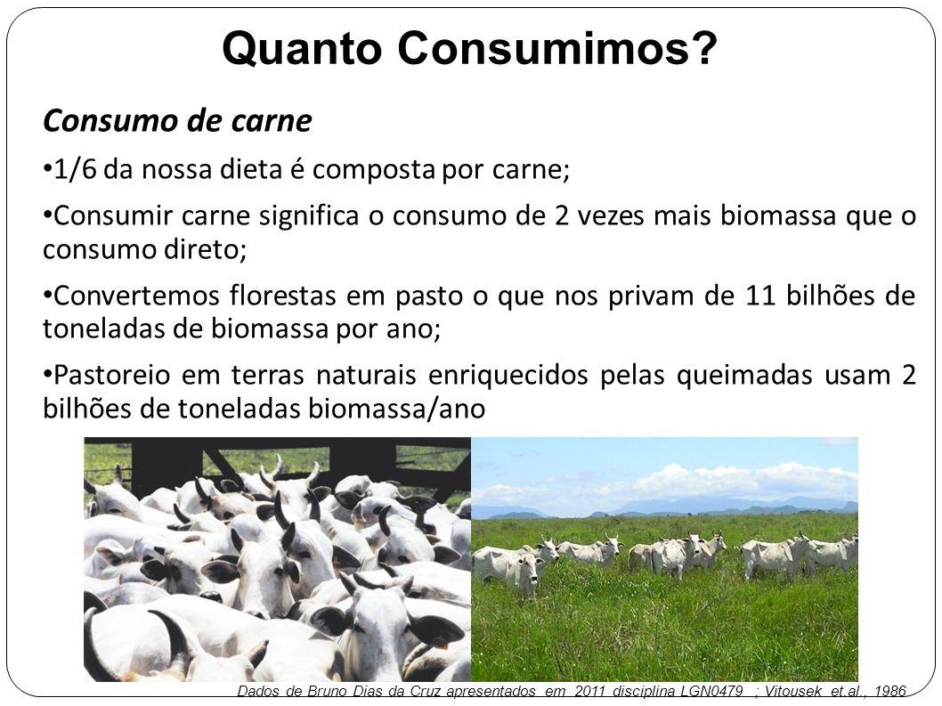 Quanto Consumimos Consumo de carne