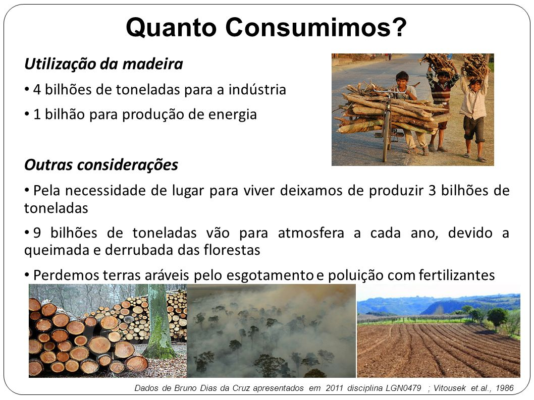 Quanto Consumimos Utilização da madeira Outras considerações