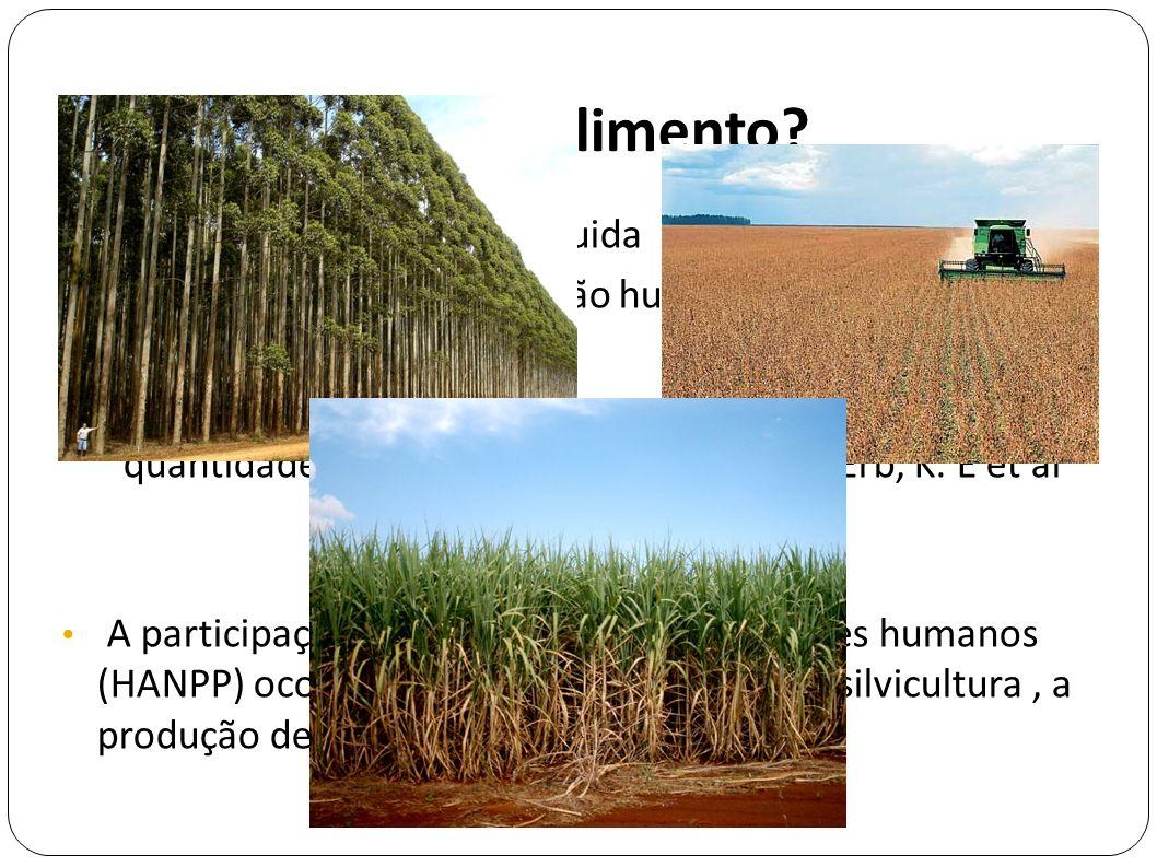 De onde vem o alimento NPP - produção primária líquida