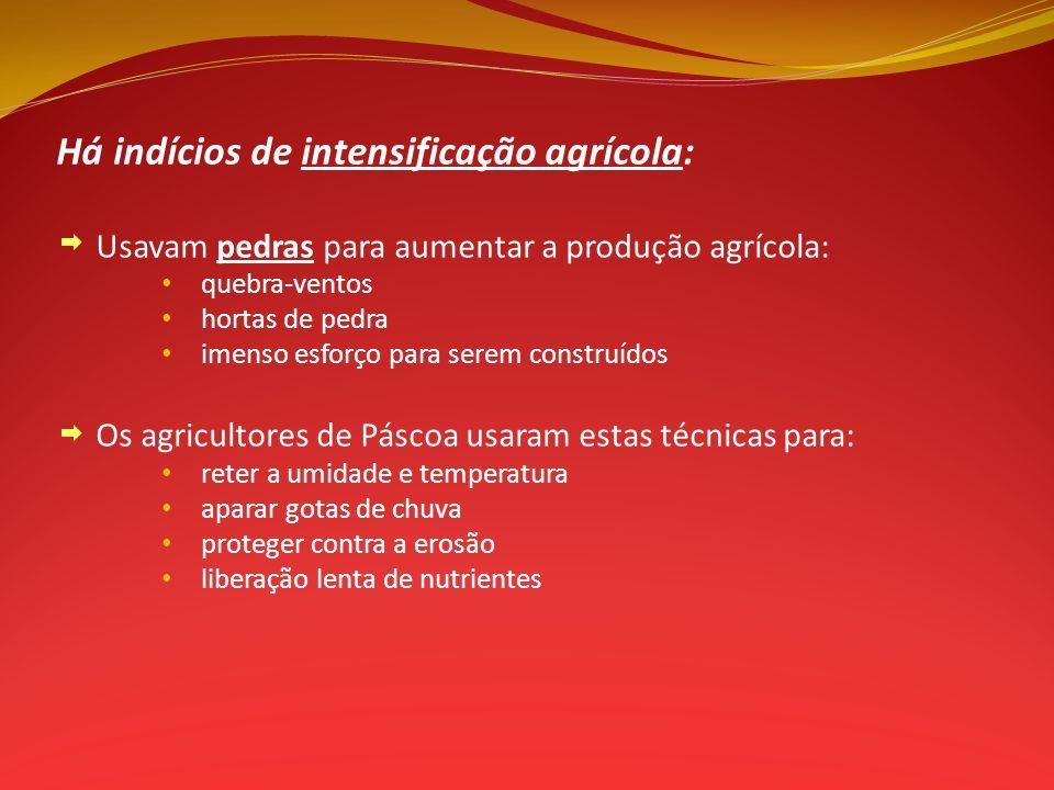 Há indícios de intensificação agrícola: