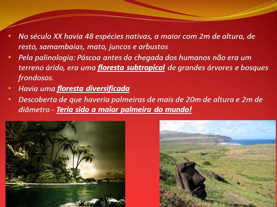 No século XX havia 48 espécies nativas, a maior com 2m de altura, de resto, samambaias, mato, juncos e arbustos