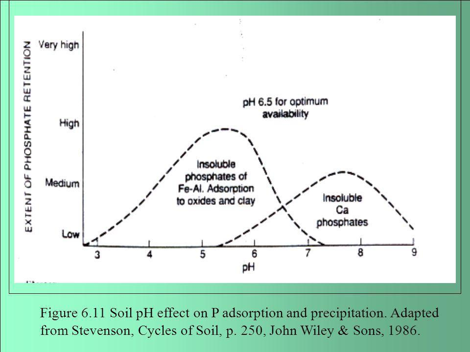 Figure 6. 11 Soil pH effect on P adsorption and precipitation