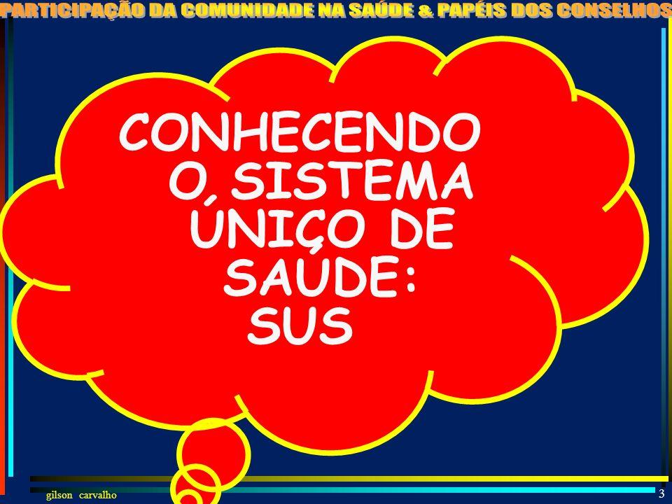 CONHECENDO O SISTEMA ÚNICO DE SAÚDE: