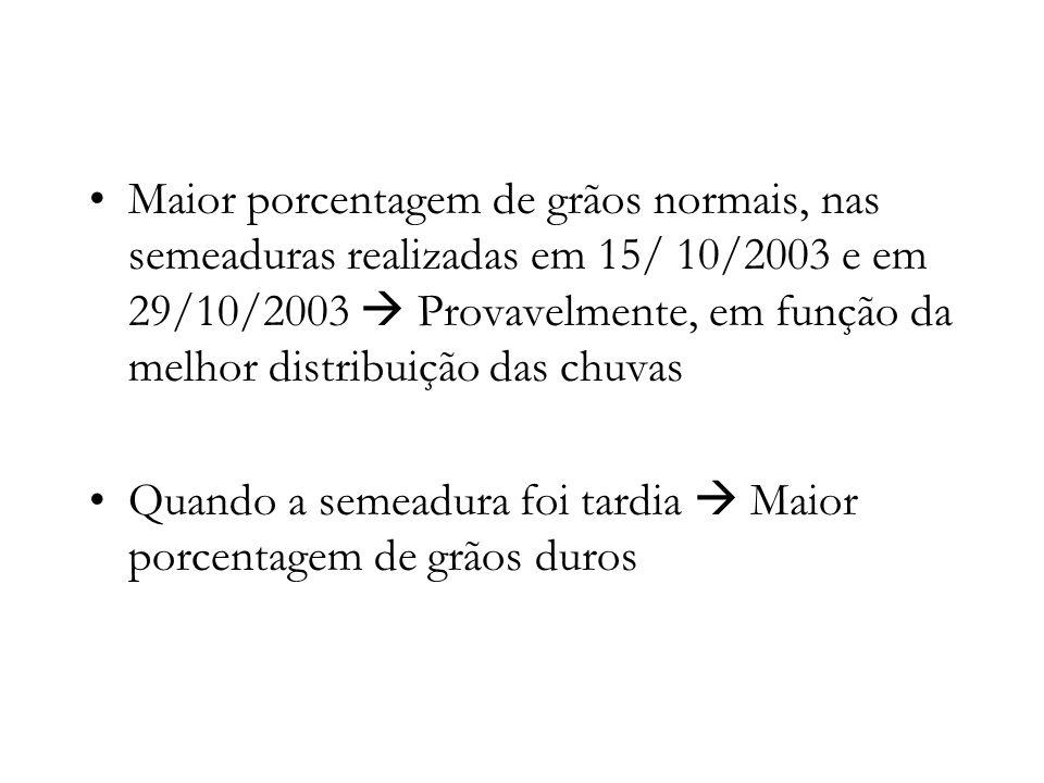 Maior porcentagem de grãos normais, nas semeaduras realizadas em 15/ 10/2003 e em 29/10/2003  Provavelmente, em função da melhor distribuição das chuvas
