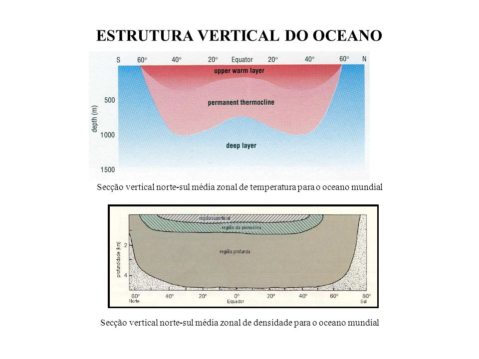 ESTRUTURA VERTICAL DO OCEANO