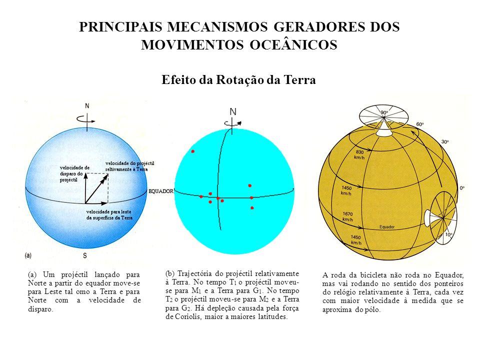 PRINCIPAIS MECANISMOS GERADORES DOS MOVIMENTOS OCEÂNICOS