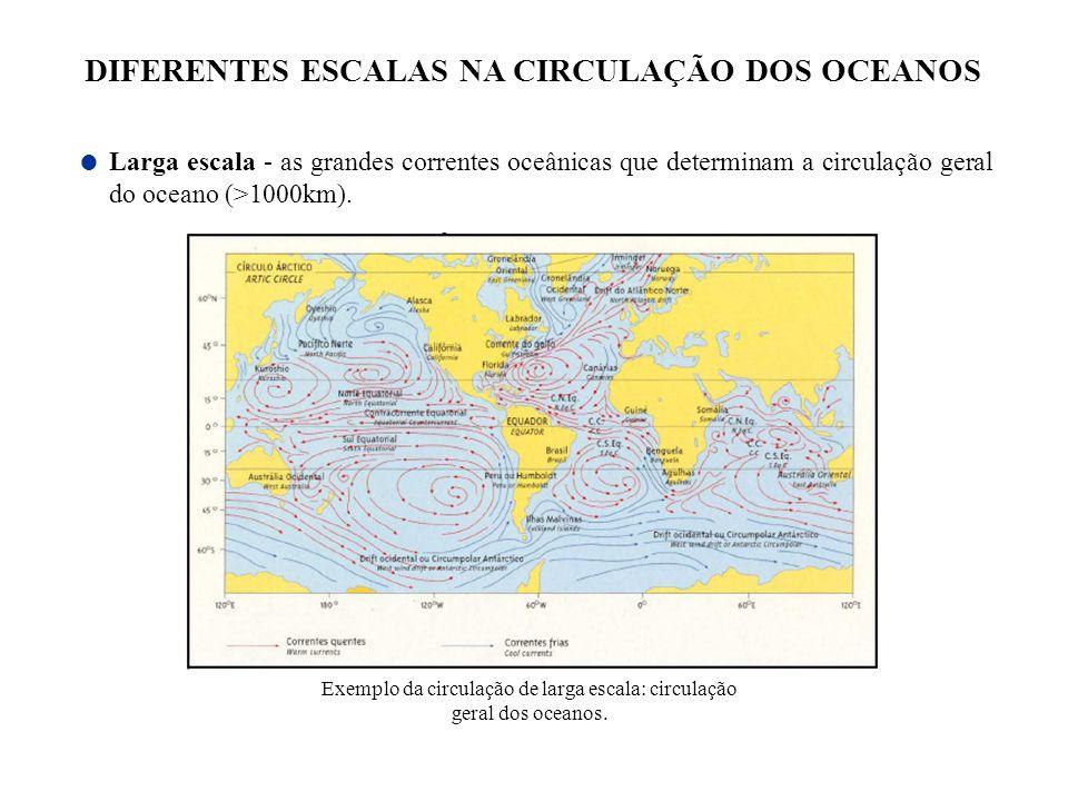 DIFERENTES ESCALAS NA CIRCULAÇÃO DOS OCEANOS