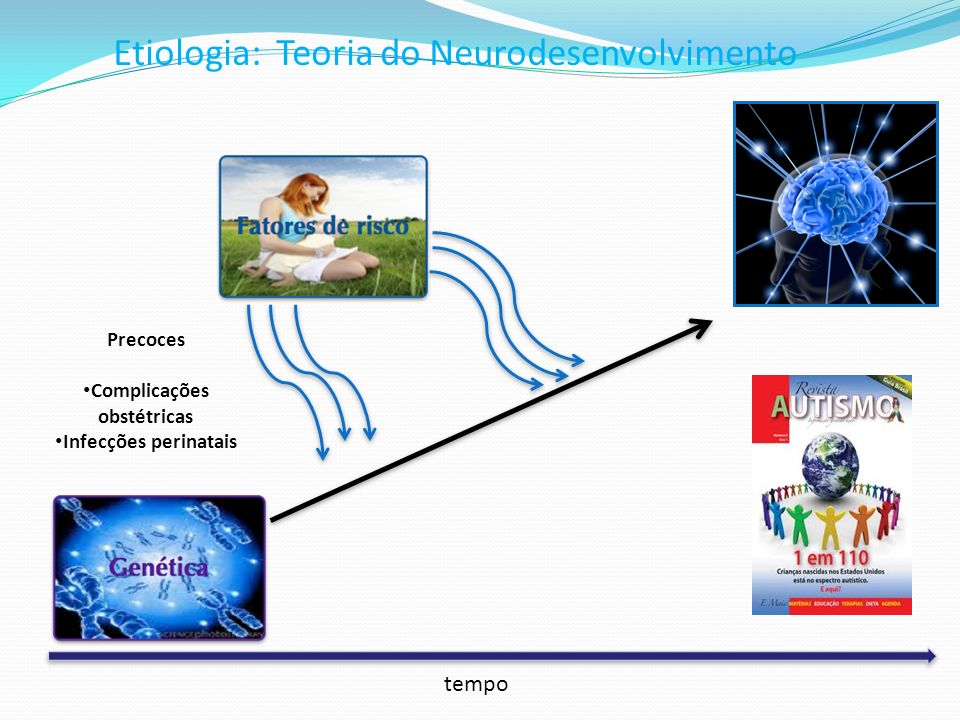 Etiologia: Teoria do Neurodesenvolvimento