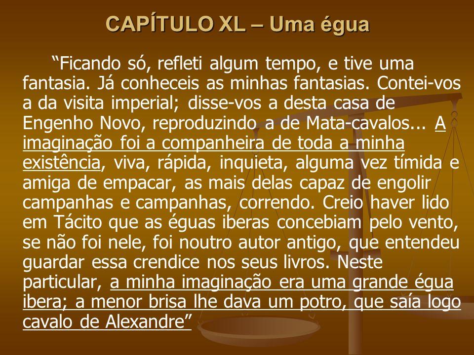 CAPÍTULO XL – Uma égua