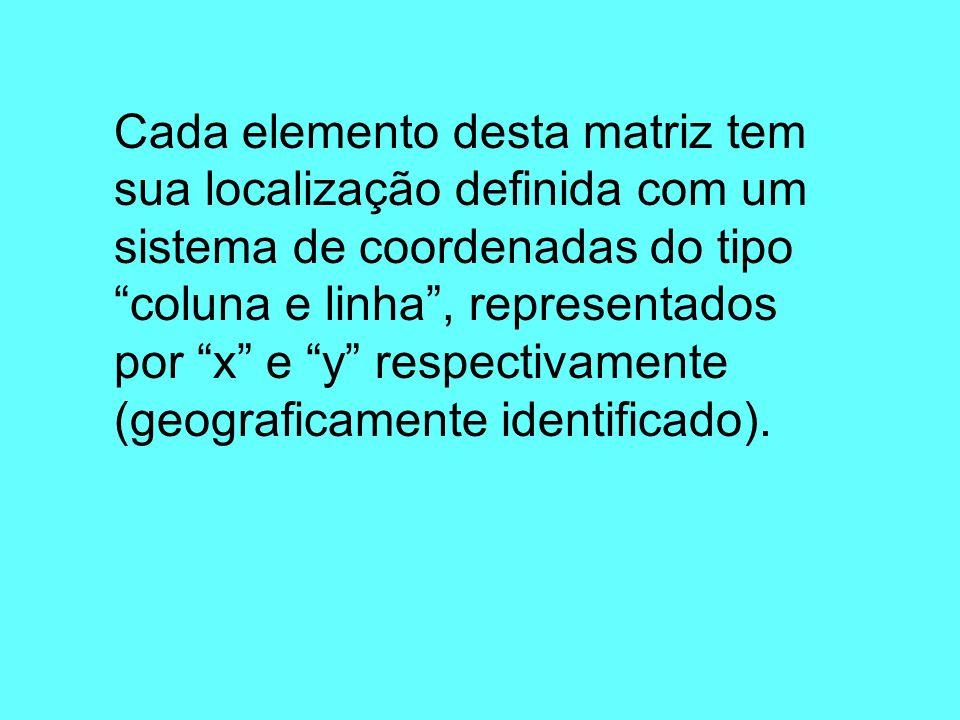 Cada elemento desta matriz tem sua localização definida com um sistema de coordenadas do tipo coluna e linha , representados por x e y respectivamente (geograficamente identificado).