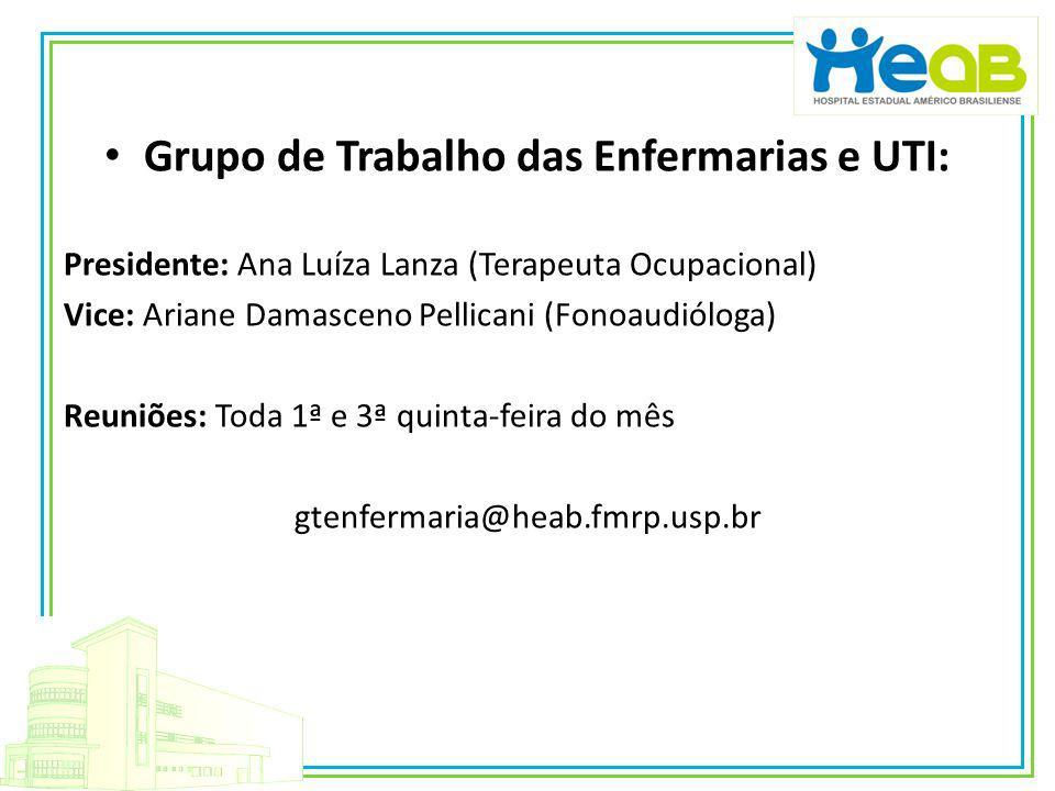 Grupo de Trabalho das Enfermarias e UTI: