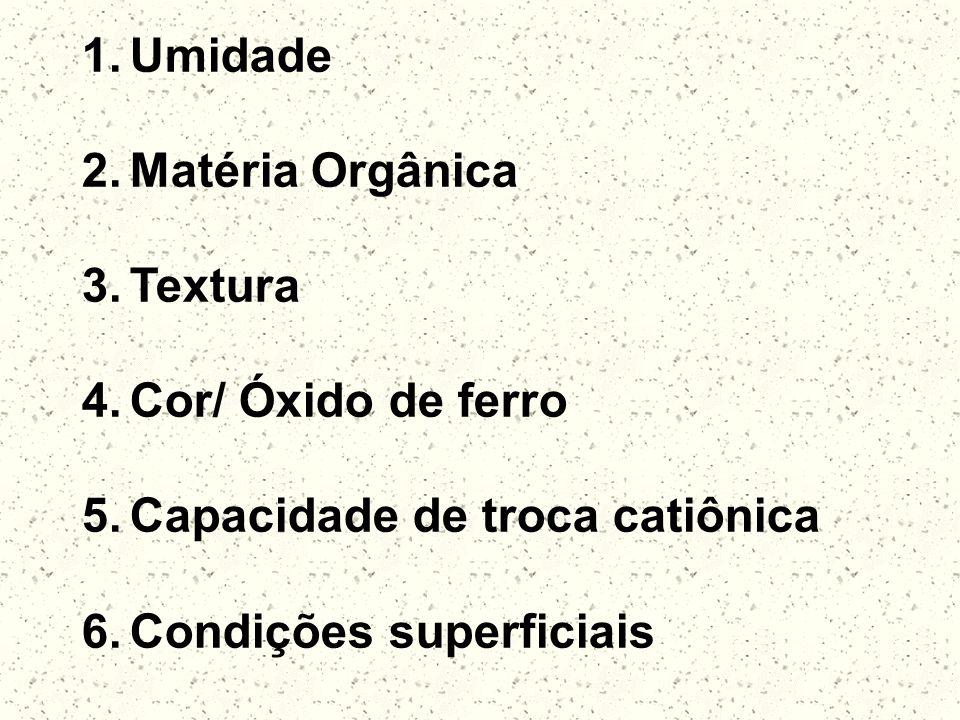 Umidade Matéria Orgânica. Textura. Cor/ Óxido de ferro.