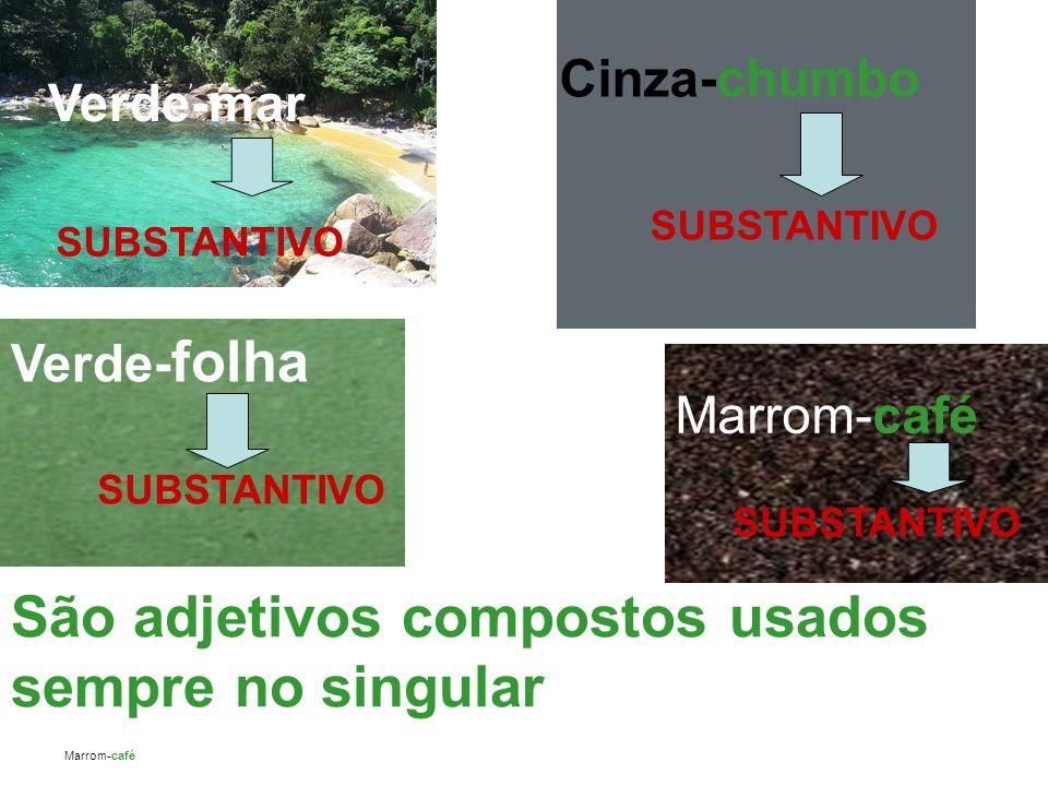 São adjetivos compostos usados sempre no singular