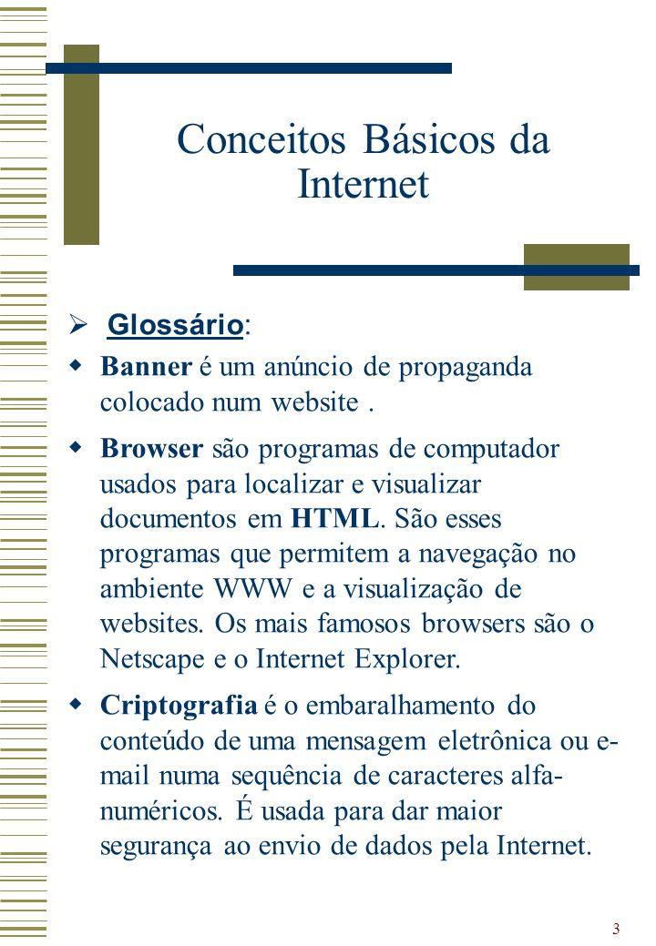 Conceitos Básicos da Internet