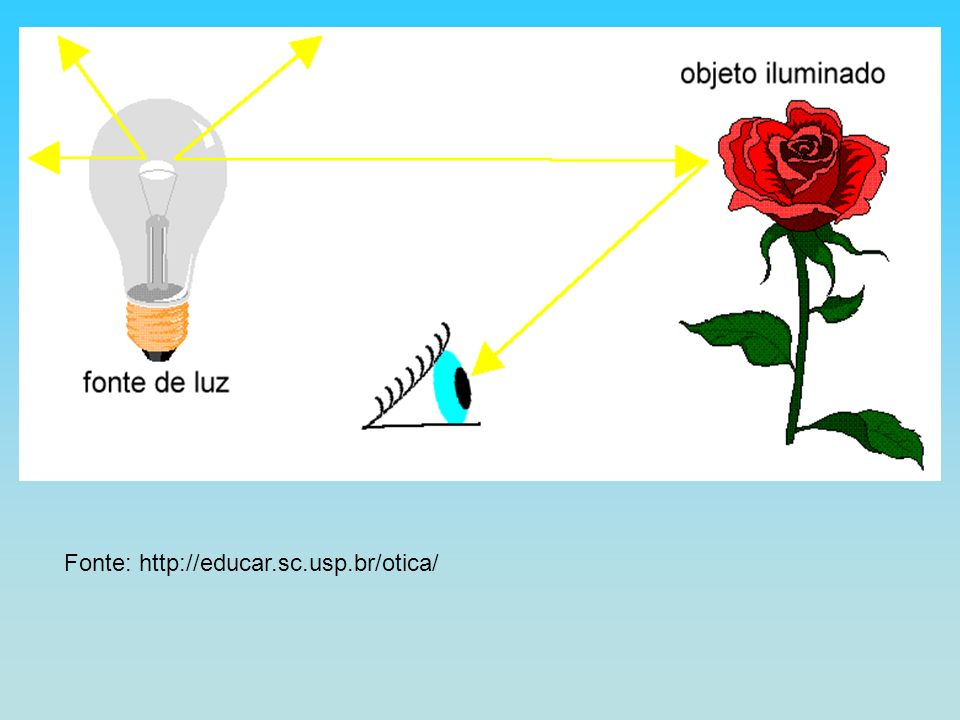 Fonte: http://educar.sc.usp.br/otica/
