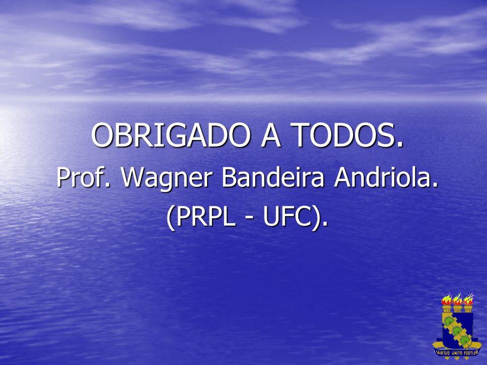Prof. Wagner Bandeira Andriola.