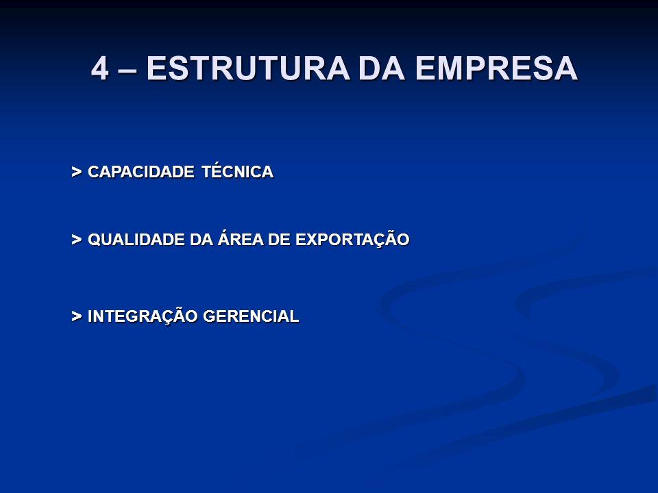 4 – ESTRUTURA DA EMPRESA > CAPACIDADE TÉCNICA