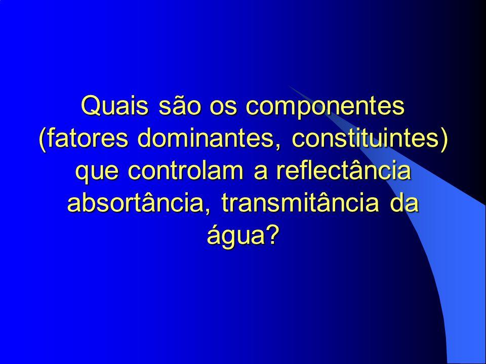 Quais são os componentes (fatores dominantes, constituintes) que controlam a reflectância absortância, transmitância da água