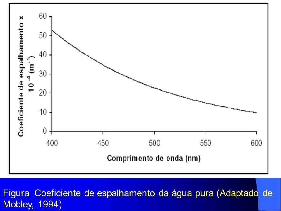 Figura Coeficiente de espalhamento da água pura (Adaptado de Mobley, 1994)