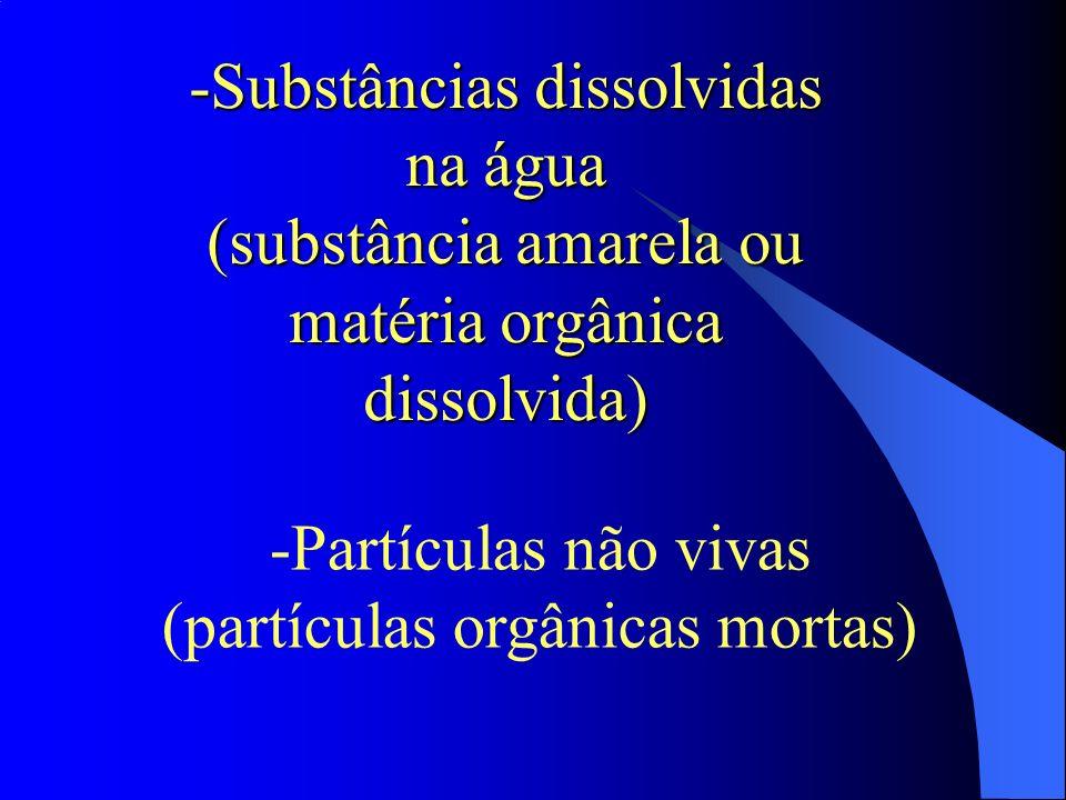 -Substâncias dissolvidas na água