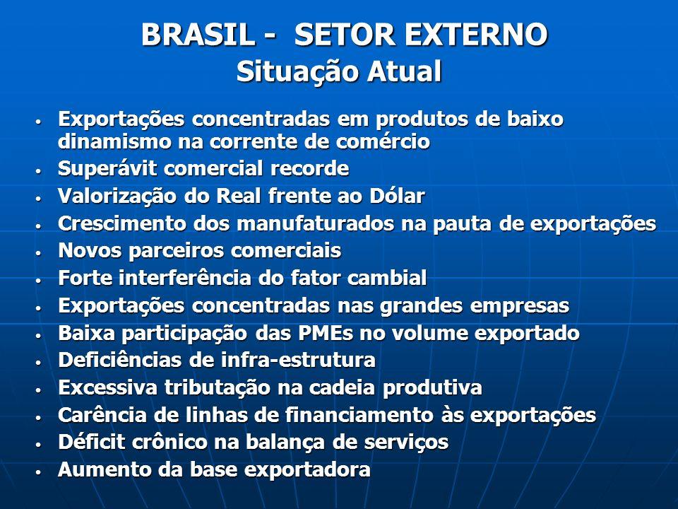 BRASIL - SETOR EXTERNO Situação Atual