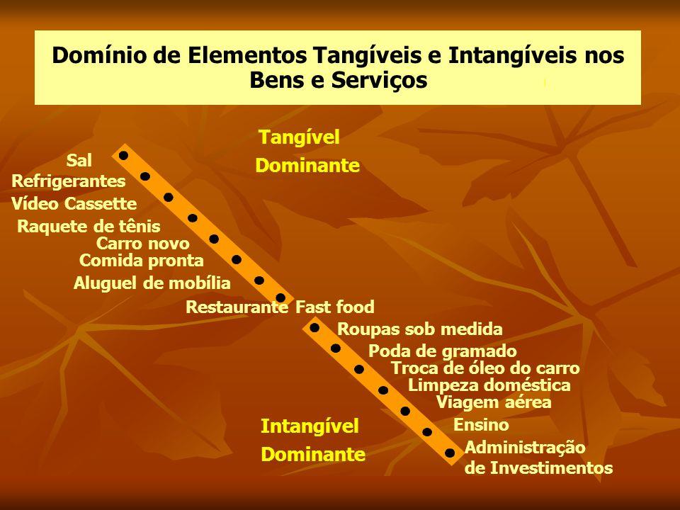 Domínio de Elementos Tangíveis e Intangíveis nos Bens e Serviços