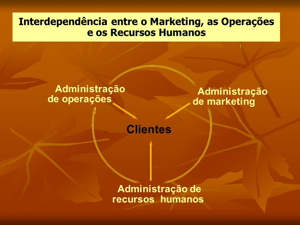 Interdependência entre o Marketing, as Operações e os Recursos Humanos