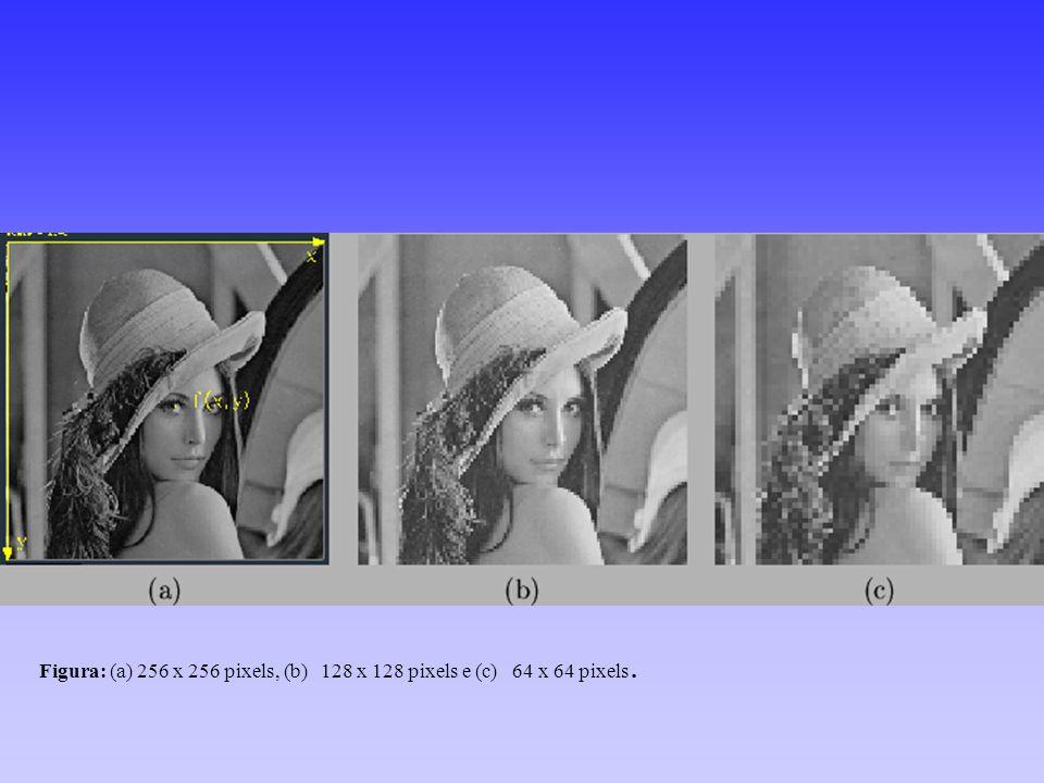 Figura: (a) 256 x 256 pixels, (b) 128 x 128 pixels e (c) 64 x 64 pixels.