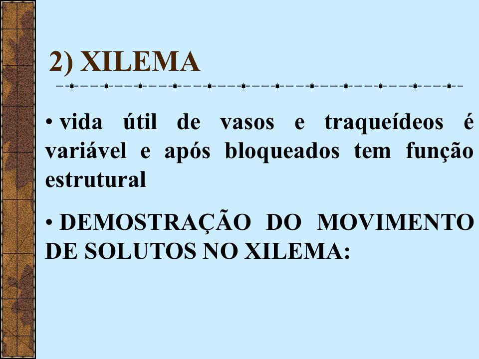 2) XILEMA vida útil de vasos e traqueídeos é variável e após bloqueados tem função estrutural.